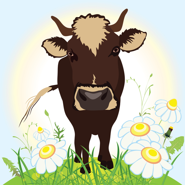 Cow on green field, grass and flowers, vector illustration